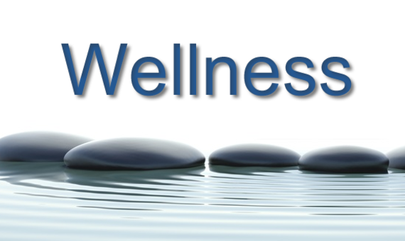 Glades County School District Wellness Policy